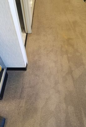 Before & After Carpet Cleaning in Geneva, IL (2)
