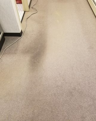 Before & After Carpet Cleaning in Geneva, IL (1)